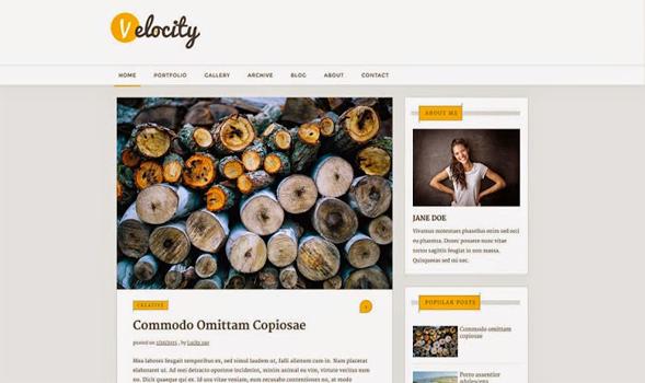 Velocity-Blogger-Template