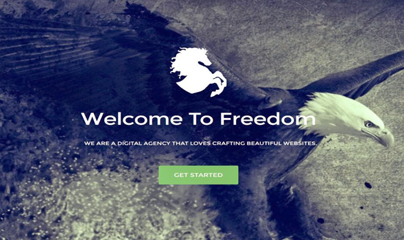Freedom-Portfolio-Blogger-Template