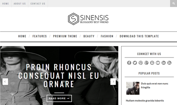 Sinensis-Attractive Blogger-Template
