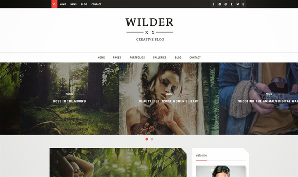 Wilder-Blogger-Template