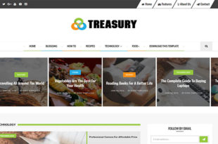 Treasury Blogger Template