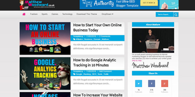 authority blogger template