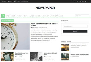 Newspaper Blogger Template