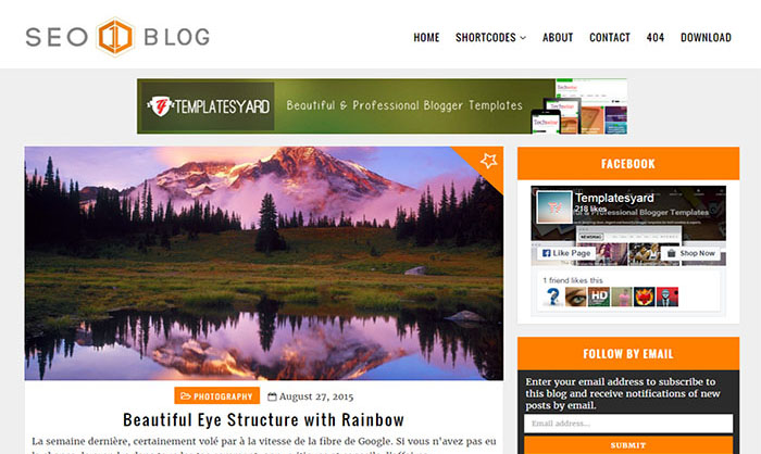 SEO Blog Blogger Template