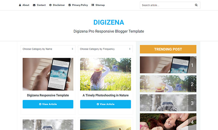 DIGIZENA Blogger Template