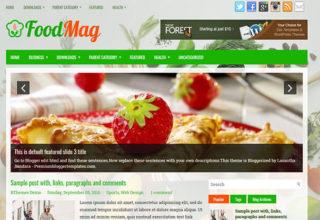 FoodMag Blogger Template